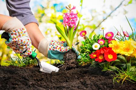 Gartenbedarf aus Raten kaufen